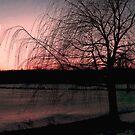 Moon Sunset Over Frozen Verona Park Lake, Verona NJ by Jane Neill-Hancock