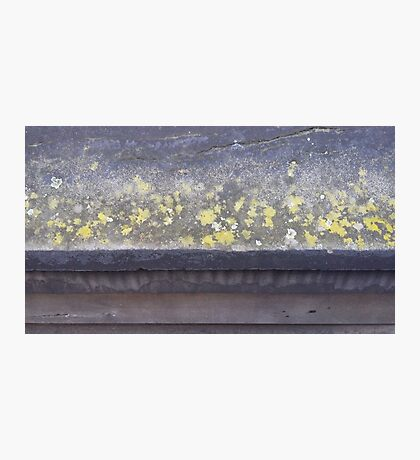 Lichen ledge Photographic Print