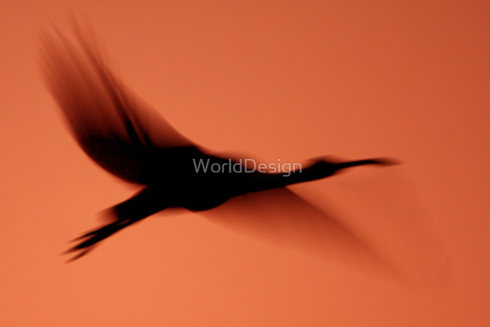 Late Arrival by WorldDesign