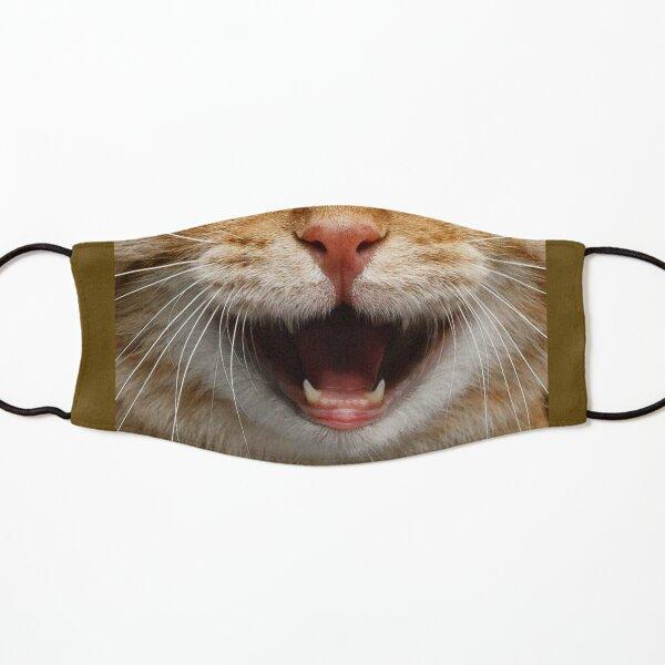Orange Tabby Cat Face Kids Mask