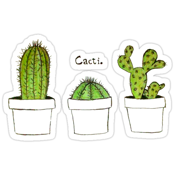 Quot Cactus Quot Stickers By Felicia H 228 Gerstr 246 M Redbubble