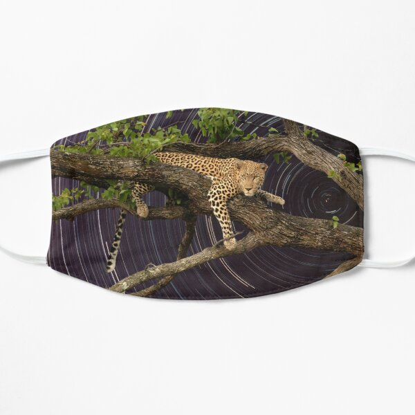 Leopard in tree with startrail Mask