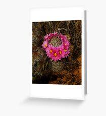 Perfect Pincushion Cacti  Greeting Card