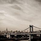 The New York City Skyline and the Manhattan Bridge by Vivienne Gucwa