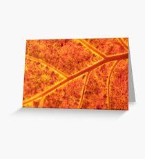 Sea-grape Leaf Greeting Card