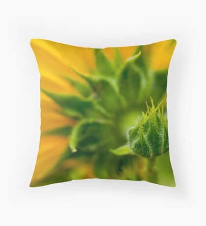 Nature's Abstract 9 Throw Pillow
