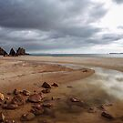 Otama Beach, Coromandel by Paul Mercer