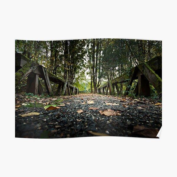 Moss Covered Bridge Poster
