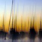 Matilda Bay Abstract by Ladyshark