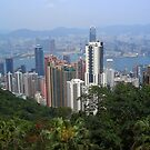 Hong Kong from the Peak by Bev Pascoe