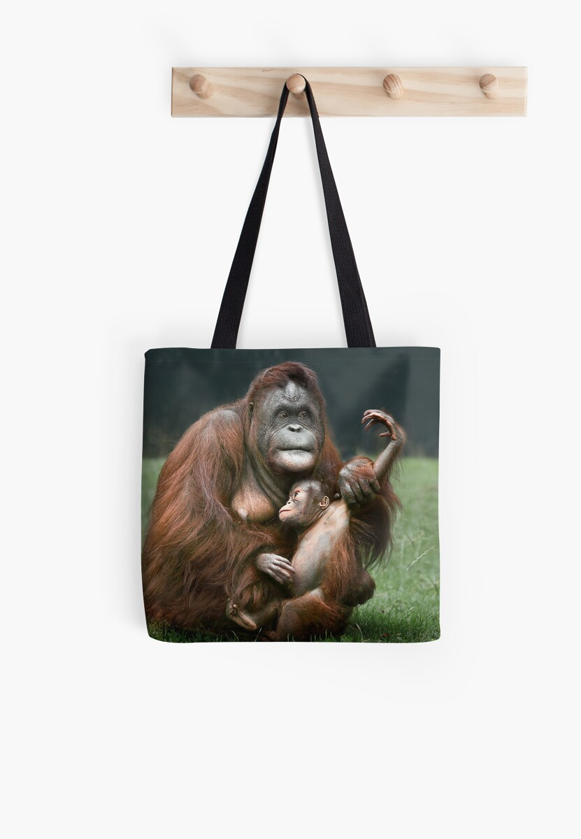 Orangutan Mother and Baby by Patricia Jacobs DPAGB LRPS BPE4