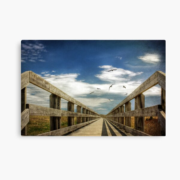 The Boarwalk Canvas Print