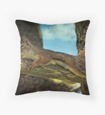 The Nutcracker Sleep Throw Pillow