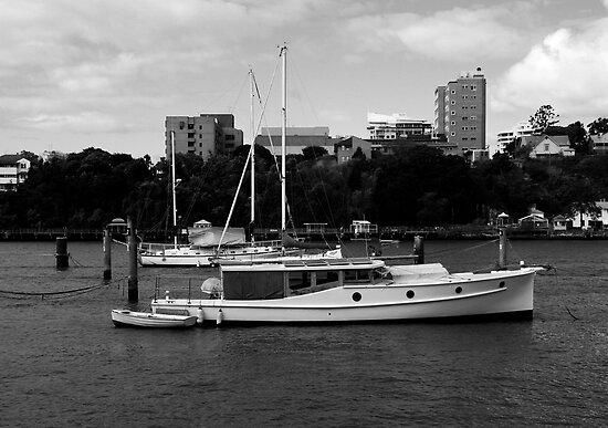 Bay Cruiser by Noel Elliot
