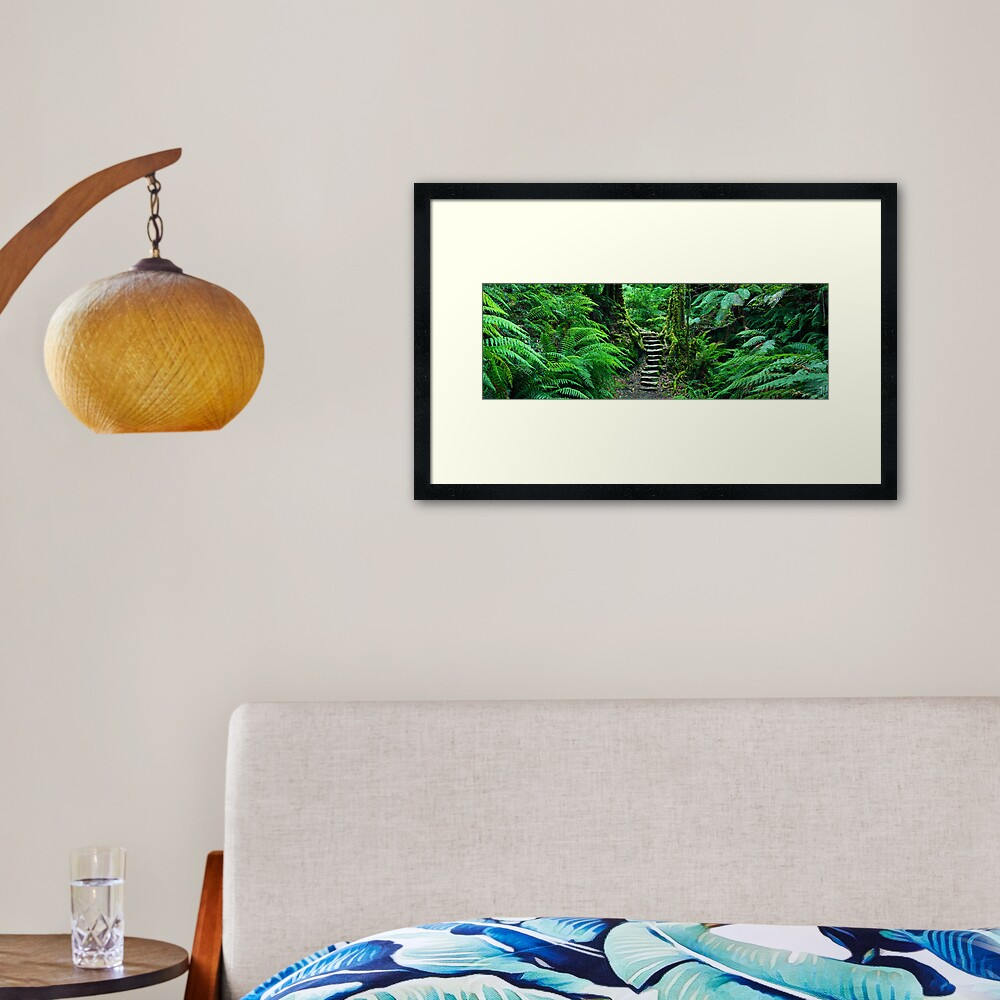 Grand Canyon Track, Blue Mountains, New South Wales, Australia Framed Art Print