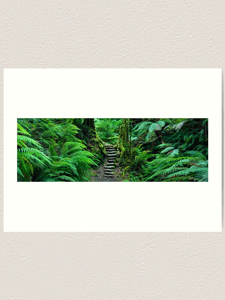 Alternate view of Grand Canyon Track, Blue Mountains, New South Wales, Australia Art Print