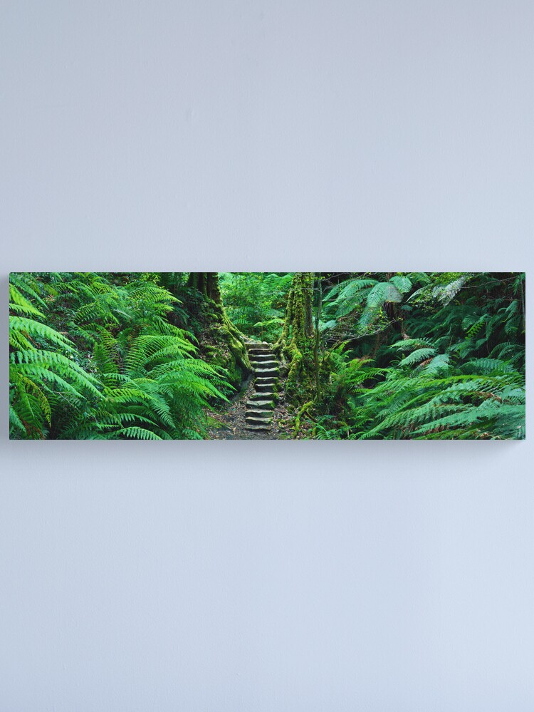 Alternate view of Grand Canyon Track, Blue Mountains, New South Wales, Australia Canvas Print
