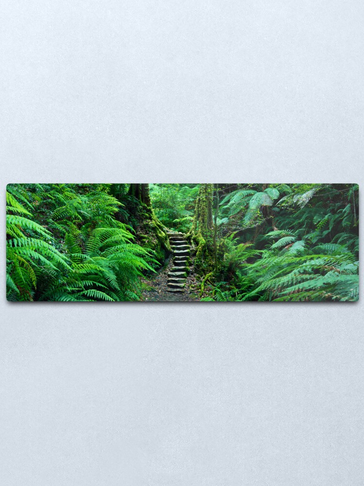 Alternate view of Grand Canyon Track, Blue Mountains, New South Wales, Australia Metal Print