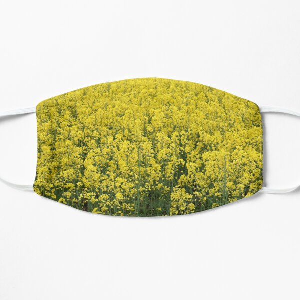 Beautiful shining rapeseed Mask