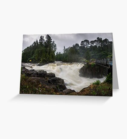 Weve had a bit of rain lately Greeting Card