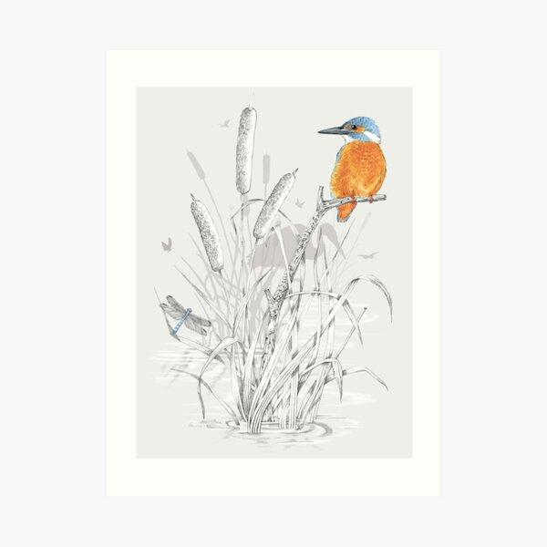 Kingfisher 1 Art Print