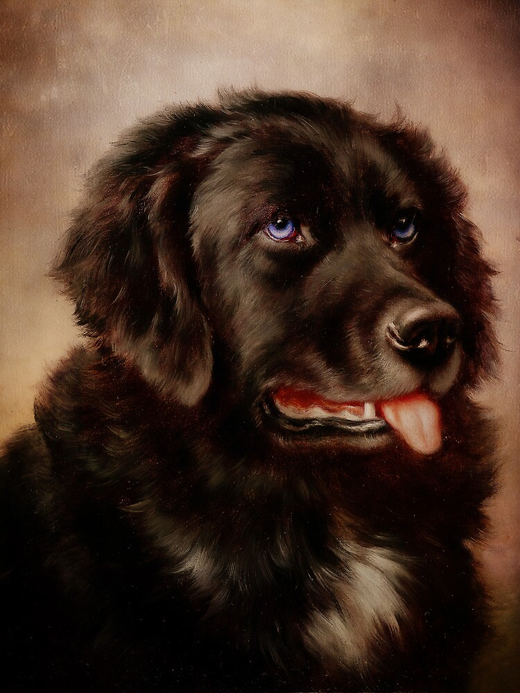 Canine Attachment by Pamela Phelps