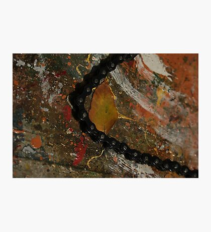 Early Leaf that fell by Garage Door Chain Photographic Print