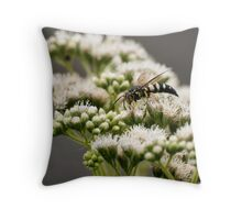 Busy Bee on White Throw Pillow