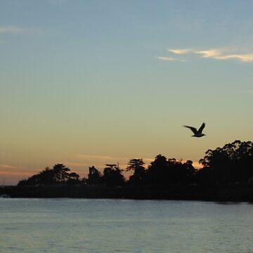 Sunset and Bird by annnaalove