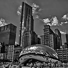 The Bean B/W by anorth7