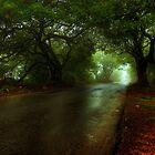 Monsoon Magic by Prasad