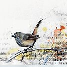 Inland Thornbill by urbanmonk