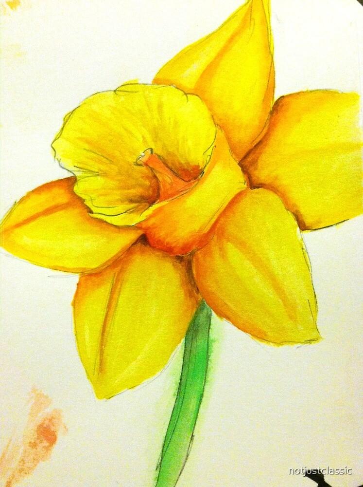 Daffodil by notjustclassic