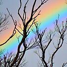 Sky Blast. by yook
