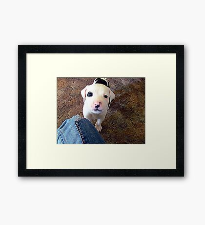 Dexter~ Dedicated to Britani and Your Family Framed Print
