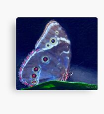 Blue Morpho-Oil Painting Effect Canvas Print
