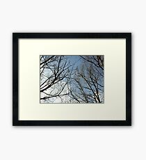To touch the sky is a wonderful thing Framed Print