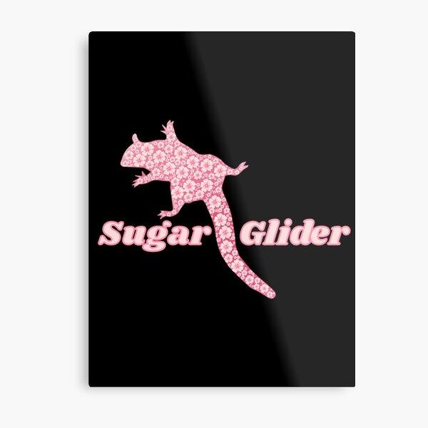 Sugar glider sugar glider pet sister gift Metal Print