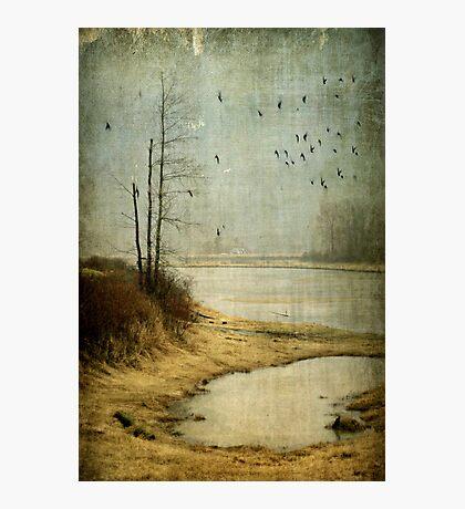 Dewdney Photographic Print