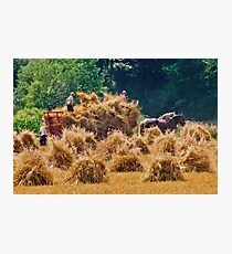 Bringing In The Sheaves Photographic Print