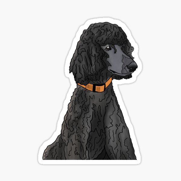 Misza the Black Standard Poodle Sticker