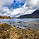 Loch Maree - the Scottish Highlands by jacqi