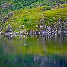 7 ★★★★★. My features Art that I LOVE!! Meravilioso Belvedere .  Å . Lofoten .Norway. july 2012. by Andy Brown Sugar. Featured Work !!! Islands , Islands , Islands . by © Andrzej Goszcz,M.D. Ph.D