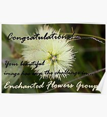 Enchanted Flowers, Challenge Winner Banner Poster