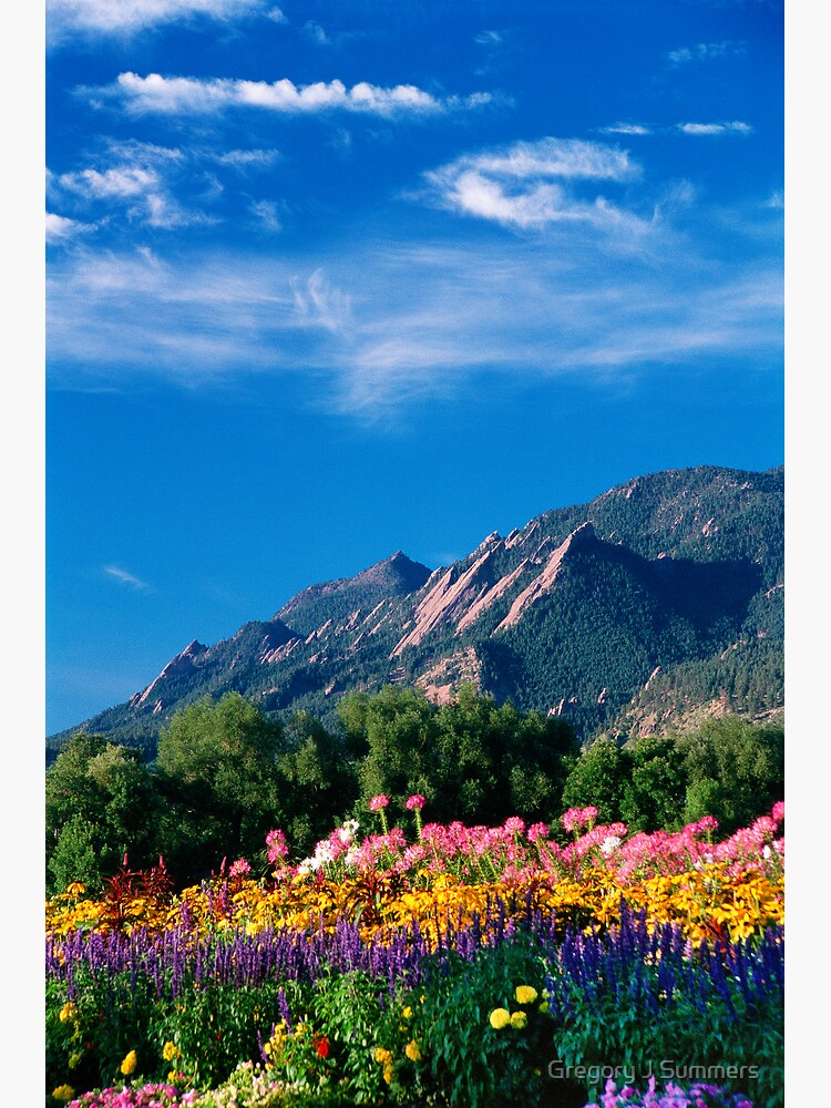 Flatirons and Flowers by nikongreg