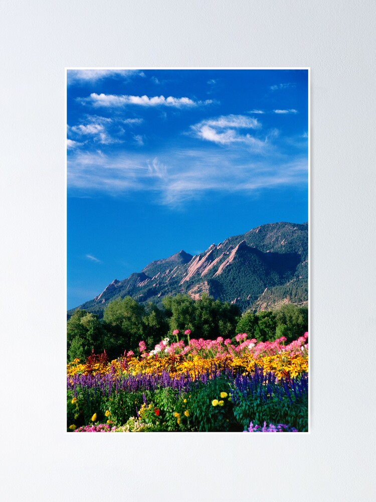 Alternate view of Flatirons and Flowers Poster