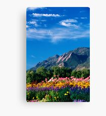 Flatirons and Flowers Canvas Print