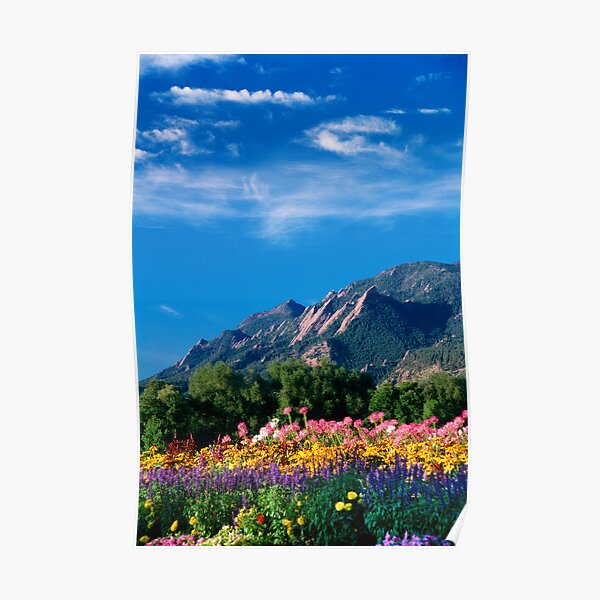 Flatirons and Flowers Poster