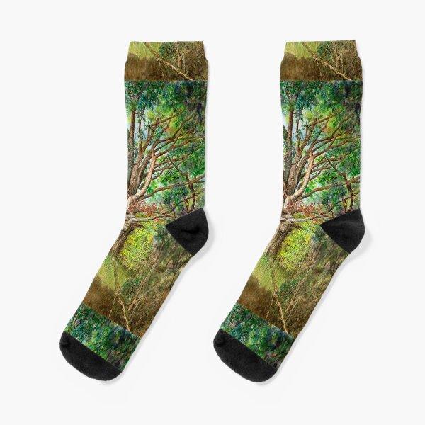 Wisdom Socks