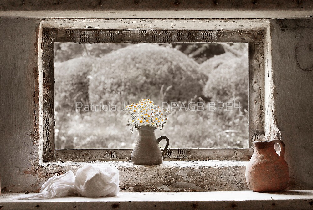 Flowers In The Window by Patricia Jacobs DPAGB BPE4